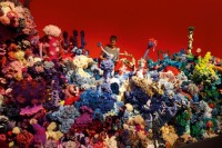 OpenLab welcomes Crochet Coral Reef: CO2CA-CO2LA Ocean to the Sesnon Gallery at UC Santa Cruz